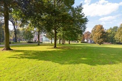 Buurtinformatie-Haarlemmerhout-Haarlem