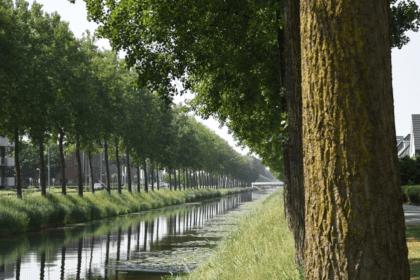 Huis-Verkopen-in-Hoofddorp-Mooijekind-Vleut-Makelaars