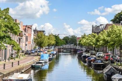Burgwal-Haarlem-Buurtinformatie