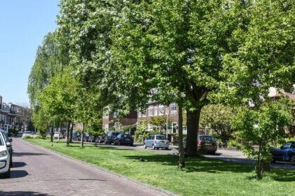 Ter-Kleef-en-Te-Zaanen-Haarlem-Buurtinformatie